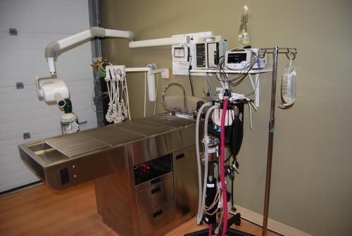 Examination equipment at muskoka animal hospital
