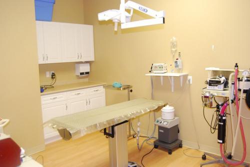 Examination room at muskoka animal hospital